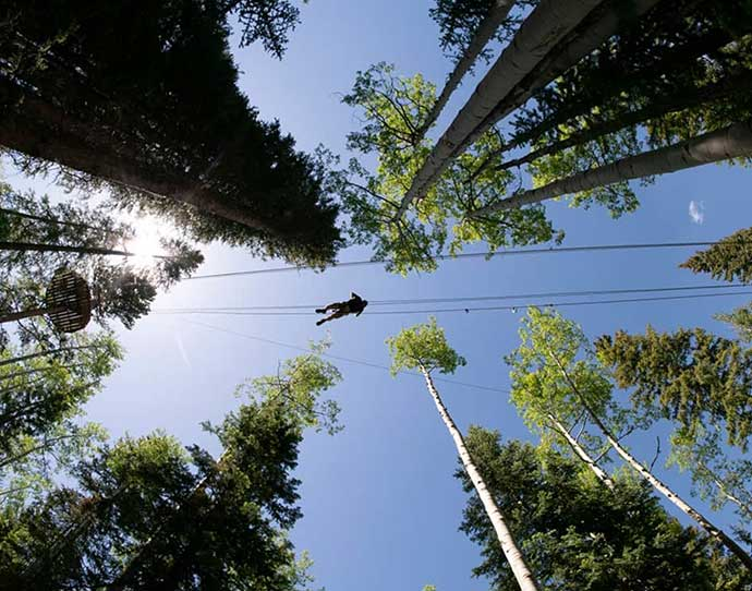 Lost Forest Zip Line in Snowmass, Colorado