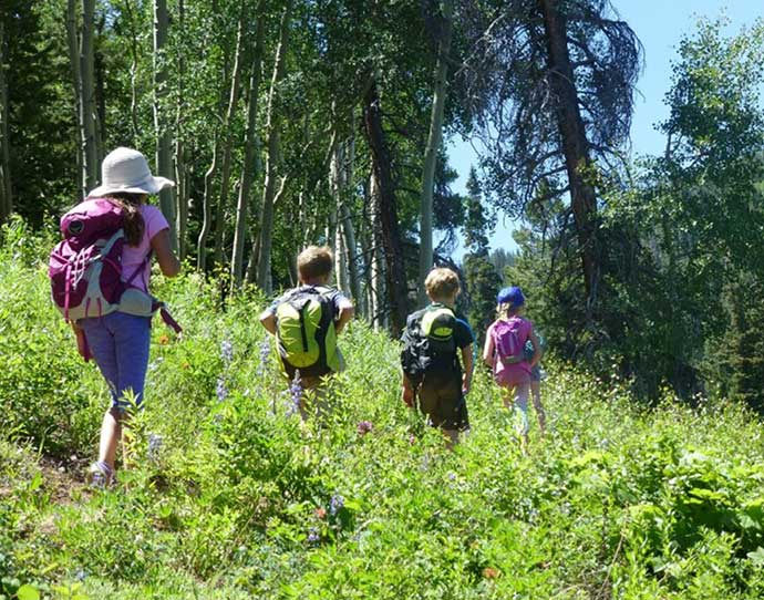 Family hiking in the summer in Snowmass, Colorado